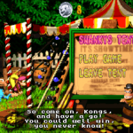 dkc3_screenshot_019